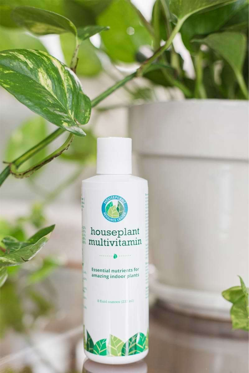 Houseplant-Multivitamin-1