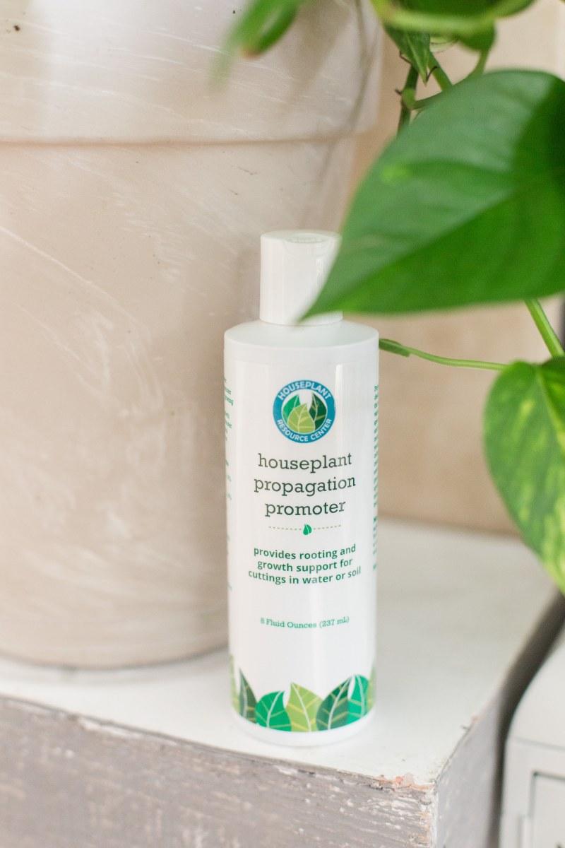 Houseplant-Propagation-Promoter-3