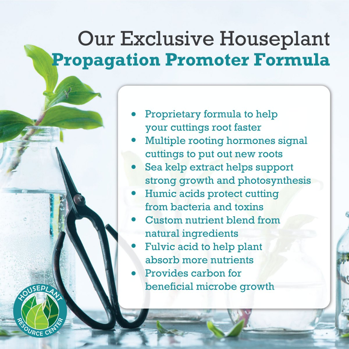 our-propagation-promoter