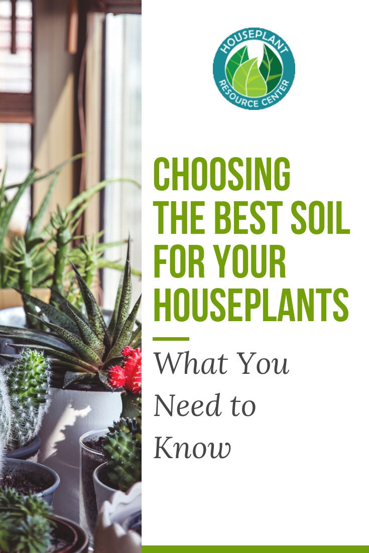 Choosing The Best Soil For Your Houseplants What You Need To Know Houseplant Resource Center