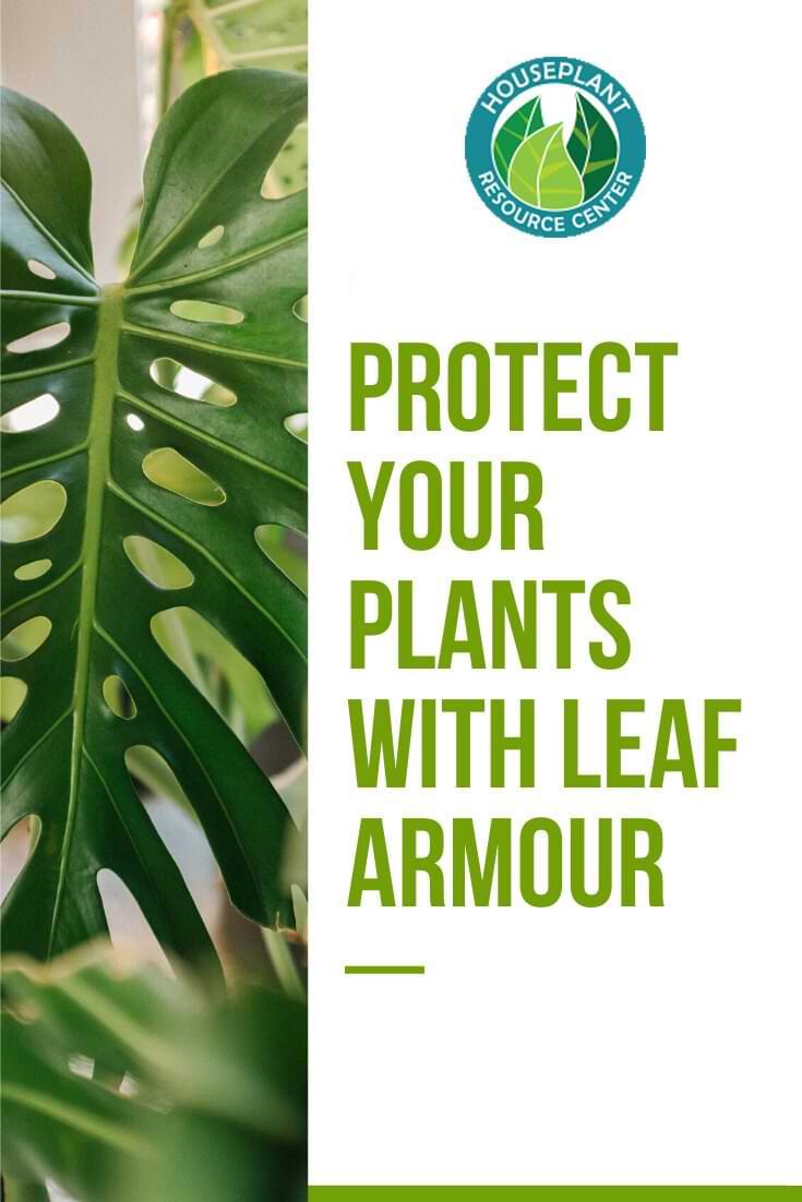 Leaf Armour