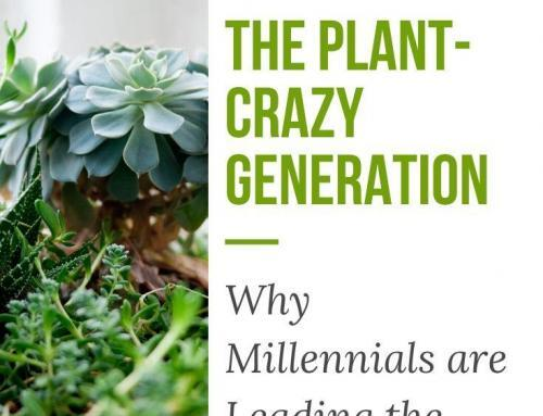 The Plant-Crazy Generation: Why Millennials are Leading the Houseplant Trend