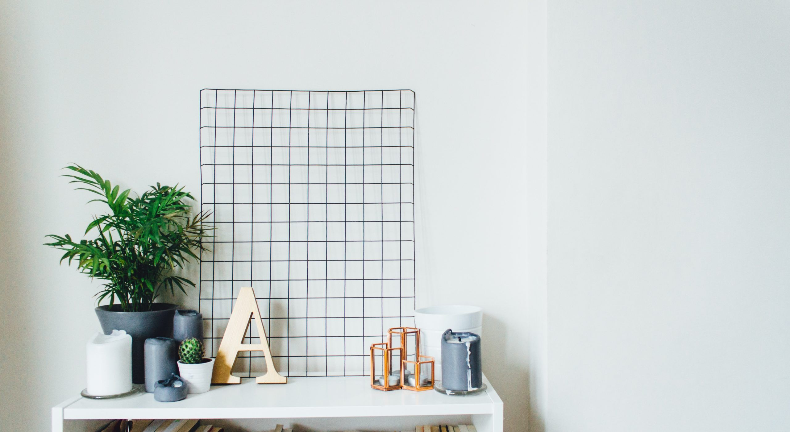 Top Plants for the Feng Shui Curious