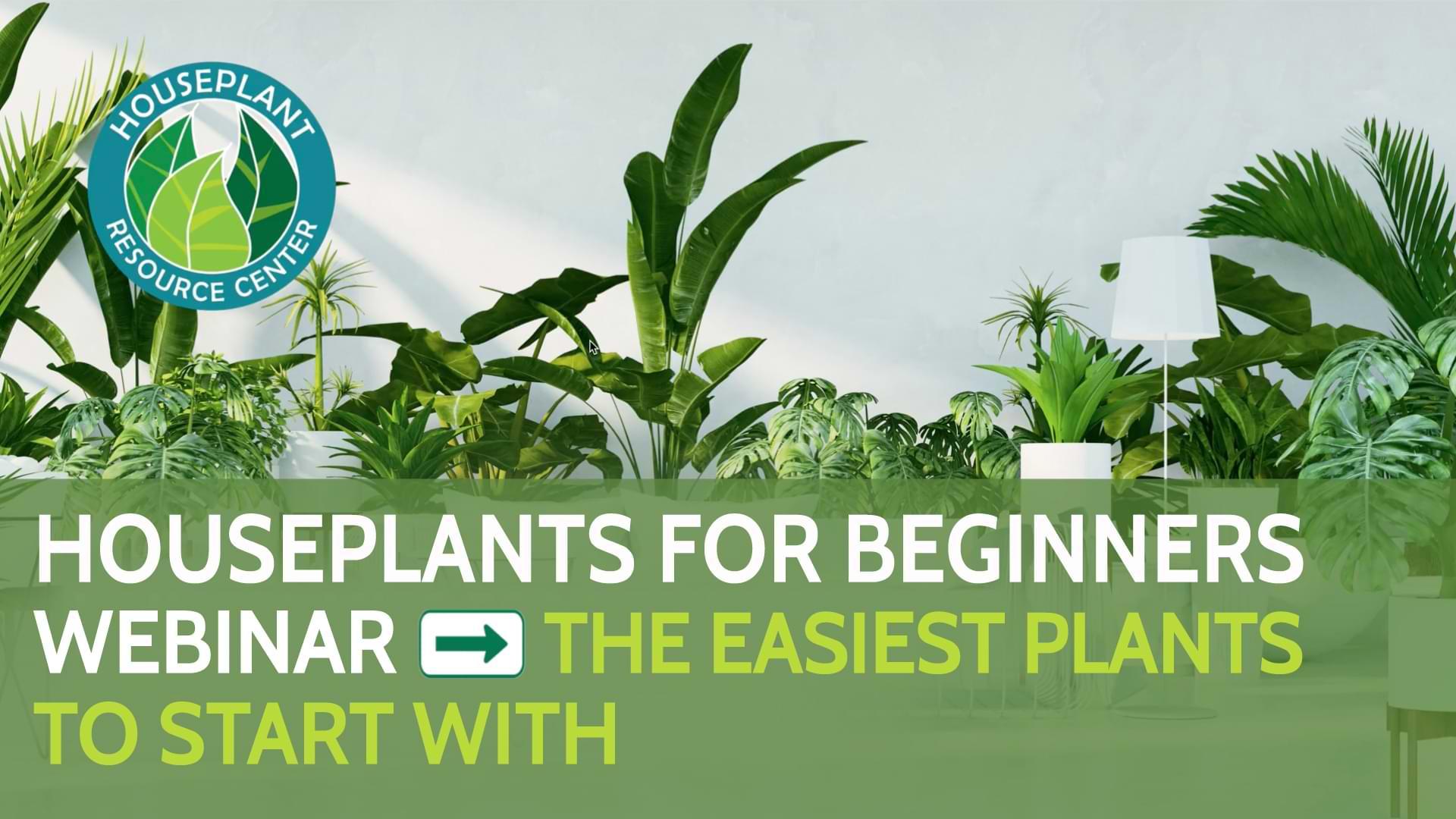 Houseplants For Beginners Webinar New